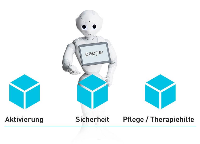 konzept_pepper4pflege